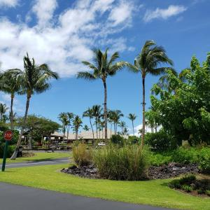 日頃運転しないドライバーがハワイ島でレンタカーを借りてみたら