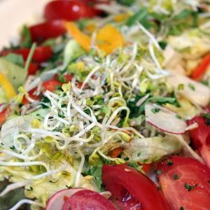 【丸の内】和食洋食惣菜ランチビュッフェが安いレストラン【葡萄の杜互談や】