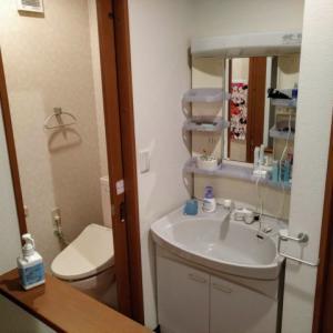 戸建て住宅の2階には洗面台を付けたほうがお勧めですよ!子どもが居るお家なら特に!