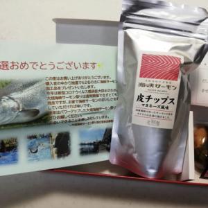 大畑海峡サーモン祭りのアンケート葉書を出したらプレゼントがもらえたよ!これは美味しい!