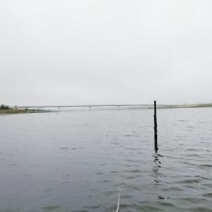江戸川放水路ボートハゼ釣り2020年9月中旬!延べ竿ハゼ釣りのミャク釣り仕掛けはコレがベスト!