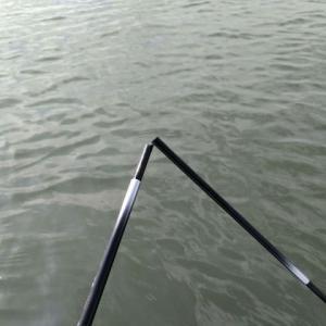 江戸川放水路ボートハゼ釣り 2020年10月釣行!深場は捨てて浅場に行くんだ!この日のタナは2m以下!!