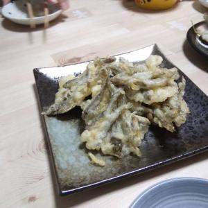 やっぱり小さいハゼはかき揚げが最適!手でワタヌキ出来るから処理も簡単!大きいのは開いて天ぷらだよー!