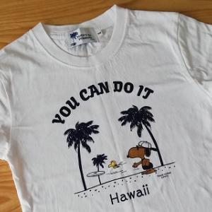 ハワイ旅行記3~今はわからなくてもいい。