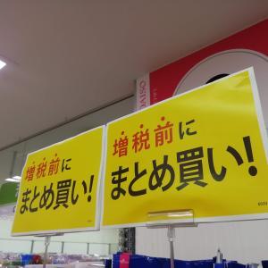 増税前に消費税のお勉強!子供達が100円ショップでお買い物!