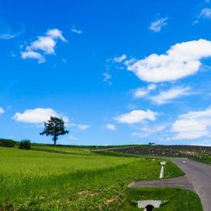 北海道でソロキャンプするなら格安レンタカーがおすすめ