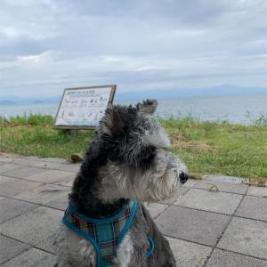 チャッピー@奥琵琶湖