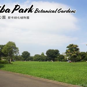 無料植物園やバーベキューも楽しめる木場公園へ行こう! @木場