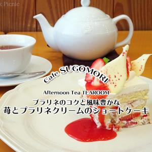 甘さを変えながら楽しめるケーキ『苺とプラリネクリームのショートケーキ』&『ストロベリーダージリン』 / Afternoon Tea TEAROOM @全国