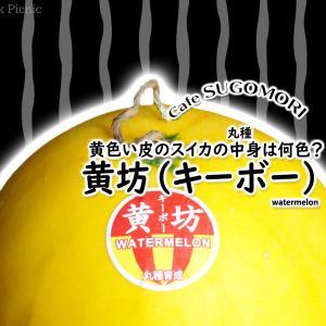 皮が黄色いスイカの果肉は何色?『黄坊(キーボー)』 / 丸種
