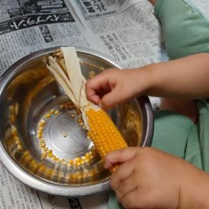 芯つき丸ごと乾燥コーン1本でつくるポップコーン。コロナ自粛の幼児も楽しめた♪これはハマる!