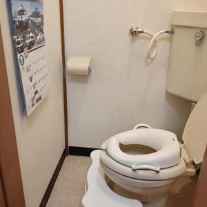 トイレトレーニングを嫌がる時に成功した方法。トイレに座るのが怖い【トイトレ④】