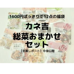 【開封レビュー】忙しい子育てママに朗報☆総菜12点が1600円ぽっきり!