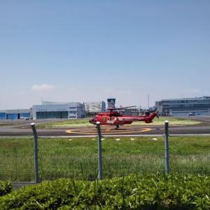 ヘリコプターが間近で見られる場所への行き方。1歳児と子連れで東京ヘリポート