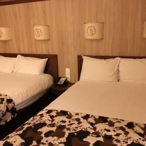 ディズニーパリ:ディズニーズホテル・シャイエンに泊まった話