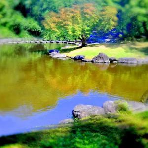 ひょうたん池の情景