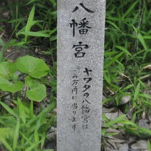 神社仏閣巡り・佐和良義神社ー12/13~13/13
