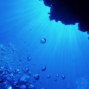 ダイビング体験と積み重ねた日々、打ち破りたかったのは過去の自分