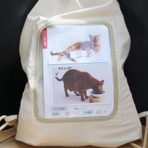 おすすめの猫の防災用品セットはこれ!猫を飼っているなら用意必須!