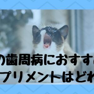 猫の歯周病・歯肉炎にどのサプリメントがおすすめ?口コミも!
