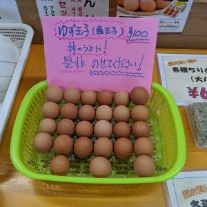 ちりめん丼食べ放題の高知の土佐角弘海産に温玉(ゆず玉子)がトッピングできる様です