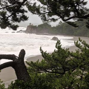 高知に大型台風が接近!桂浜の海の様子を見に行ったらお天気撮影クルーは3組もいた!