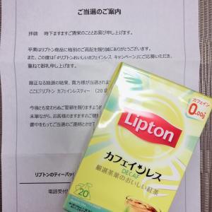 Lipton カフェインレス