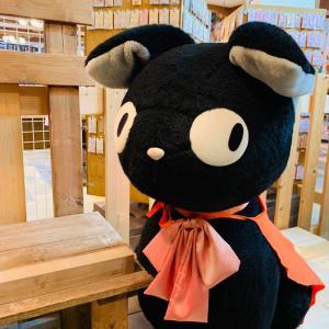 【Amazon】安♡かわいい♡ハロウィンの仮装にも♡