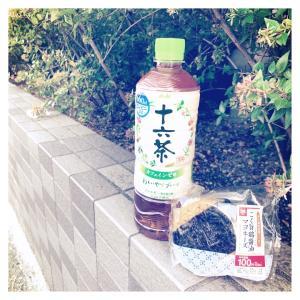 毎月16日限定 十六茶93円割引クーポン