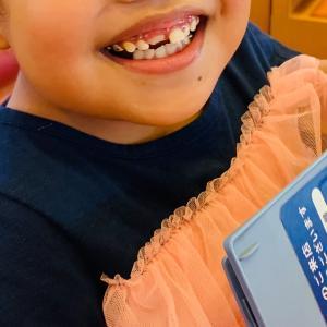 """""""【娘】歯!を覚えました♪⁽⁽٩( ᐖ )۶⁾⁾ 笑"""""""