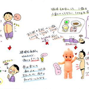 ★胆石日記6~食べられる嬉しさの裏に~
