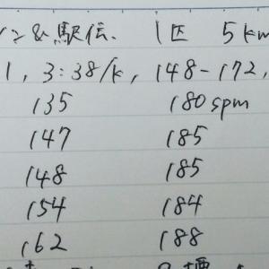 東日本ハーフマラソン&駅伝 駅伝5km