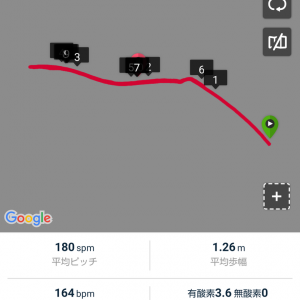 ペース走10km/箱根駅伝予選会