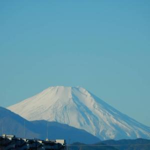 今朝の富士山は格別