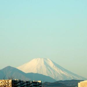 久しぶりの富士山です
