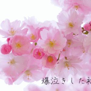 【月組】「桜嵐記」初日観劇感想。近年観た退団公演作品の中でも素晴らしい出来【ネタバレあり】