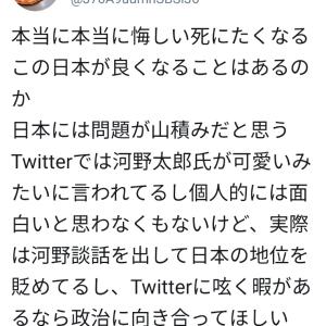 河野太郎「おいおいマジかよ。今時まだこんなことを言ってる人がいる」~ネットの反応「親父の罪をまだ勘違いしてる人も多いだろうな」「君の父上がいけないのだよ、フフフ」