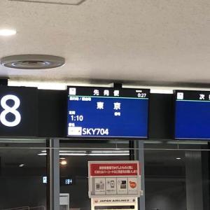 スカイマークの深夜便704便で東京へ