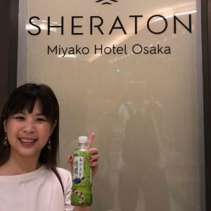 【衝撃】シェラトン都ホテル大阪でスイートアップグレード