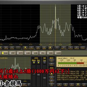 2020年2月22日 【ラジオNIKKEI】ダイヤモンドステークスの受信【中央競馬】