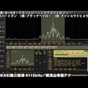 2021年6月19日 ラジオNIKKEI-中央競馬実況中継の受信