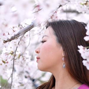 【 お花見 】#59|歴史ある桜|たんちっちのどこへでも行ってみよう!!( 大阪 -帝国ホテル~大阪城- 後半)