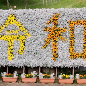 【 神戸布引ハーブ園 】#61|季節の花々|たんちっちのどこへでも行ってみよう!!(布引ハーブ園 -後半-)