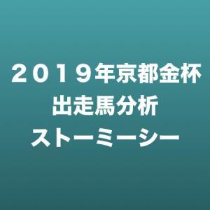 [2019年京都金杯出走馬分析] ストーミーシー