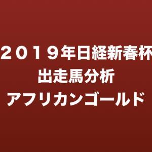 [2019年日経新春杯出走馬分析] アフリカンゴールド