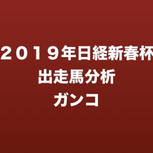 [2019年日経新春杯出走馬分析] ガンコ