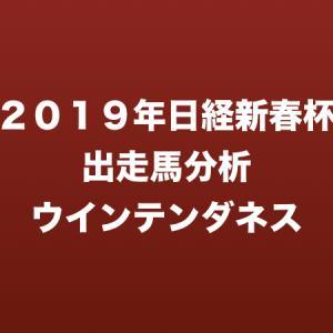 [2019年日経新春杯出走馬分析] ウインテンダネス