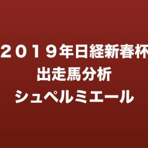 [2019年日経新春杯出走馬分析] シュペルミエール