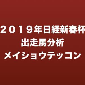 [2019年日経新春杯出走馬分析] メイショウテッコン
