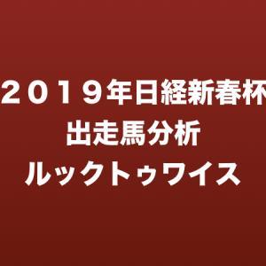 [2019年日経新春杯出走馬分析] ルックトゥワイス